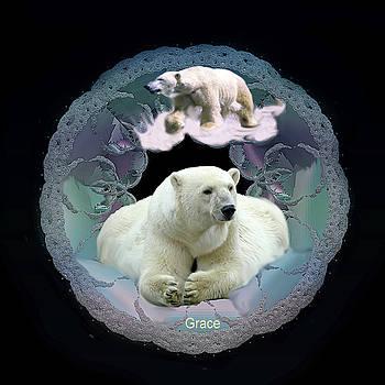Polar Bears by Julie Grace