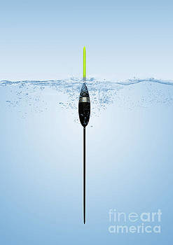 Pole Float by John Edwards