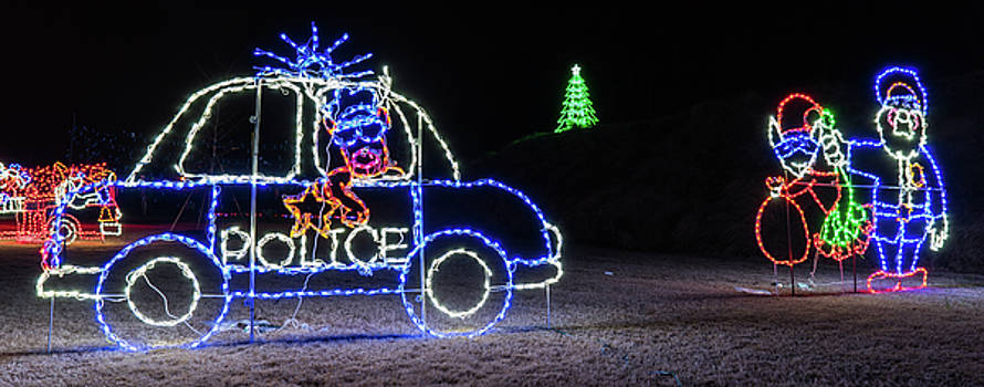 Police Lights by Daryl Clark