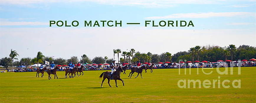 Polo Match Florida by Karen Francis