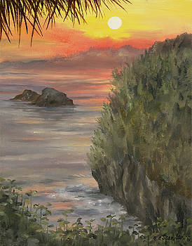Pololu by E E Scanlon