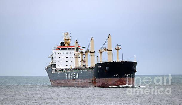 Polsteam ship by Lori Tordsen
