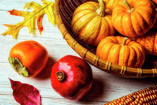 Pomegranate And Basket Of Pumpkins by Garry Gay