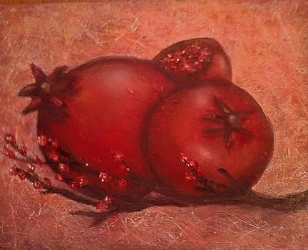 Pomegranate Autumn by Teresa Moore