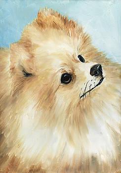 Pomeranian by Charlotte Yealey