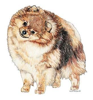 Pomeranian Portrait by Kathleen Sepulveda