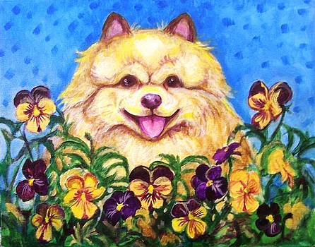 Laura Aceto - Pomeranian with Pansies