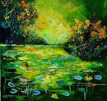 Pond 8871 by Pol Ledent
