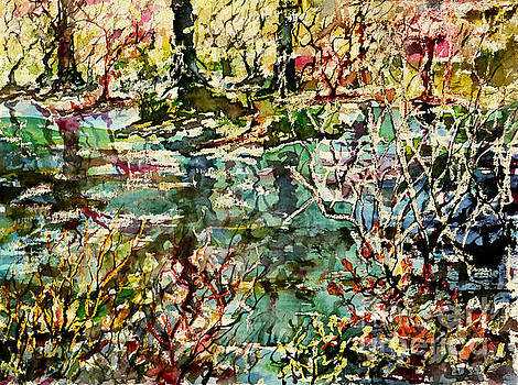 Pond and Beyond by Alfred Motzer