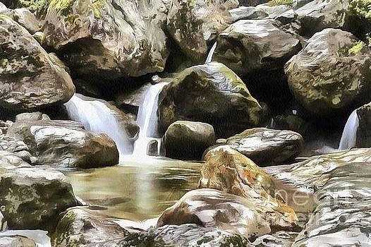Rod Wiens - Pond below the Falls