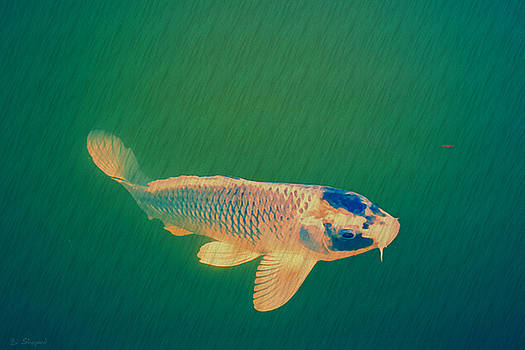 Pond Dweller by Brian Shepard