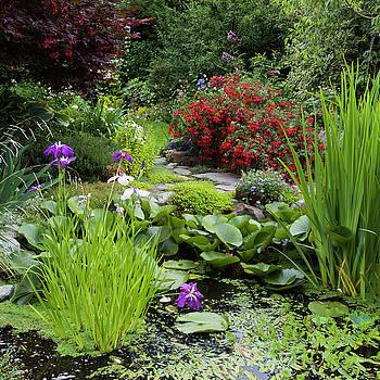 Pond Garden by Adam Gibbs
