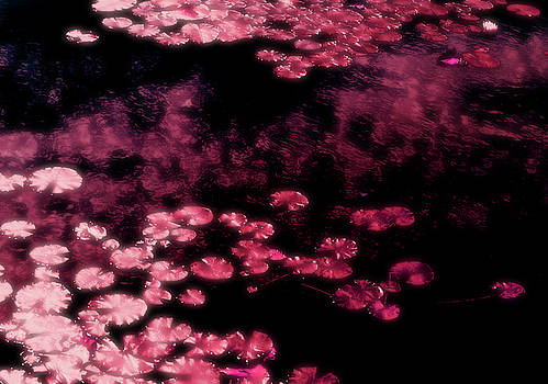Pond in Pink by JGracey Stinson