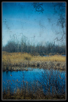 Pond in the field by Michel Filion