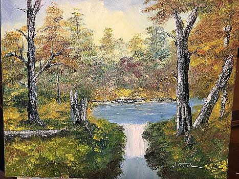 Pond in the Woods by David Bartsch