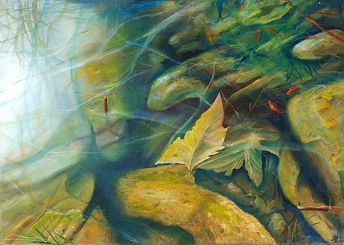 Pond by Leonard Aitken