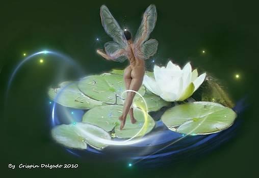 Pond Lilies by Crispin  Delgado
