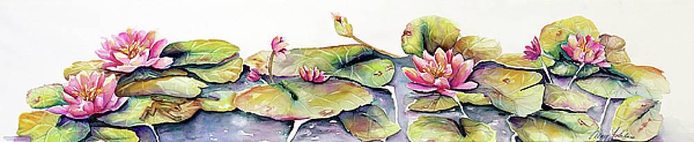 Pond Lilies by Mary Silvia