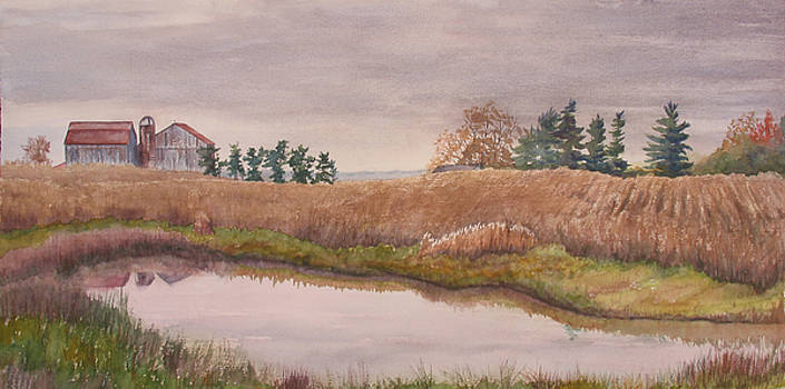 Pond Magic by Debbie Homewood