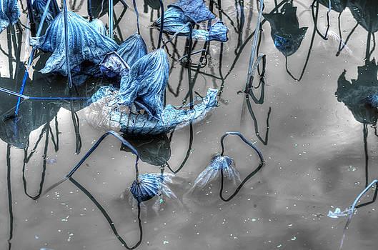 Damsels In Distress by Wayne Sherriff
