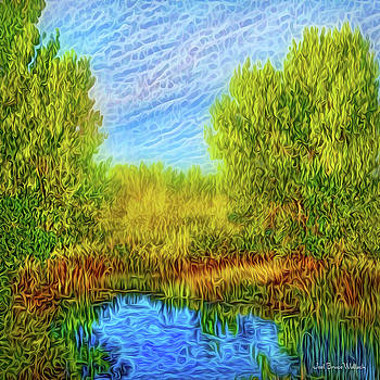 Pond Of Enchantment by Joel Bruce Wallach