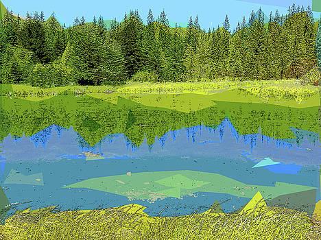 Pond by Rick Thiemke