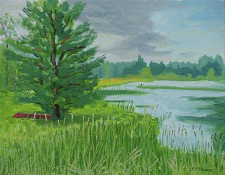 Pond Sentinel  by Robert P Hedden