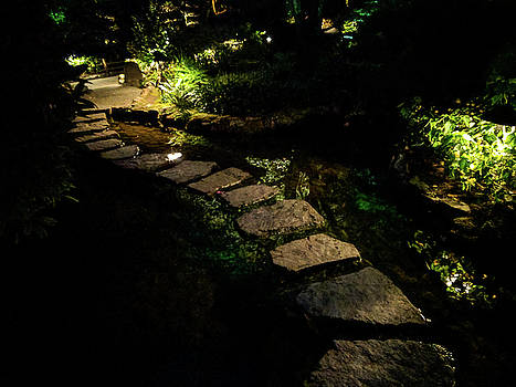 Pond stepping stones at night by Michael Bessler
