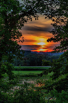 Pond Sunset  by Betty Pauwels