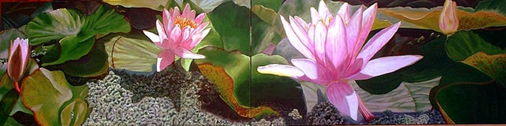 Pond Waterlillies by Joan Cookson