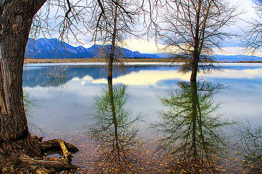 Pondering My Reflection by Juli Ellen