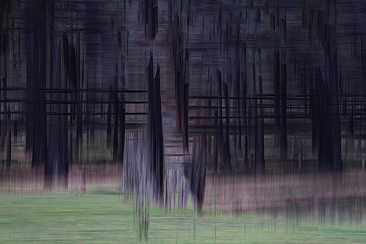 Ponderosa Purple by Deborah Hughes