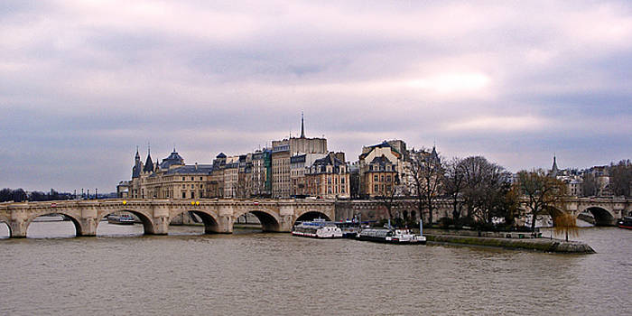 David Pringle - Pont Neuf in Paris