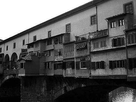 Lauren Williamson - Ponte Vecchio