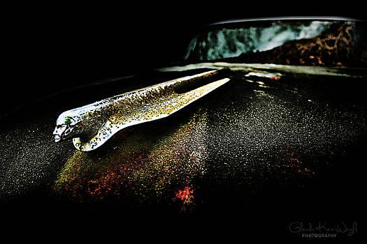 Pontiac Emblem by Glenda Wright