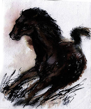 Pony 2 by Subhashis Ghosh
