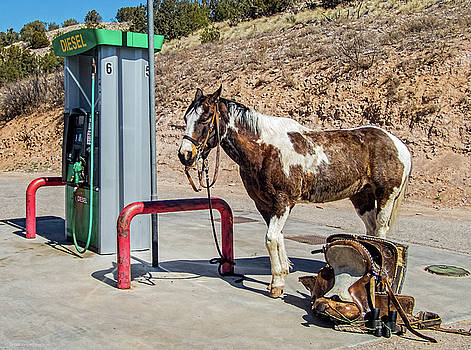 Pony at the Pump by Britt Runyon