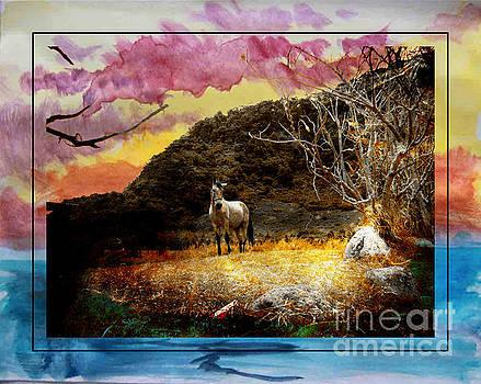 Pony In Volcan, Panama by Al Bourassa