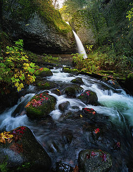 Ponytail falls with autumn foliage by William Freebilly photography