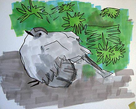 Poofy Bird by Amanda Thompson
