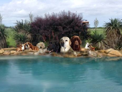 Pool Dogs  by Audrey Jordan
