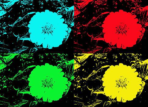 Pop Art Daisy by Russell Pittock