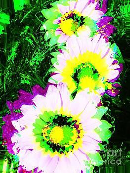 Jenny Revitz Soper - POP Art Flowers