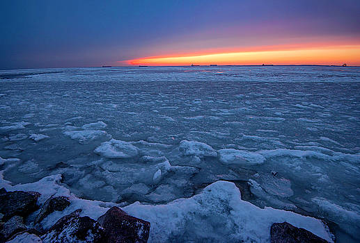 Pop Of Color On Ice by Dale Hall