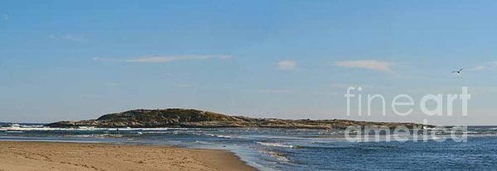 Sandra  Huston - Popham Beach State Park