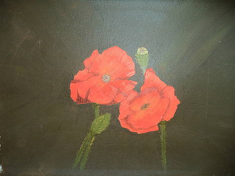 Poppies by Brenda Grigg