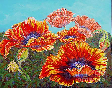 Poppies by Gail Allen