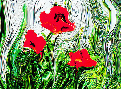 Poppies Grow Wild by Mary Chalmers Main