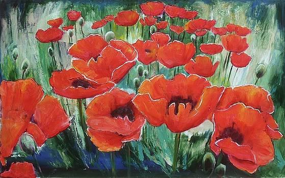 Poppies in June by Sheila Diemert