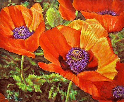 Poppies in the Light 2 by Eileen  Fong